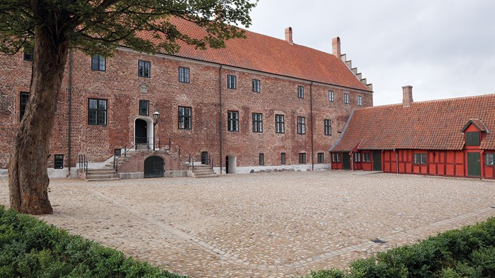 Odense's Convent of the Noble Virgin